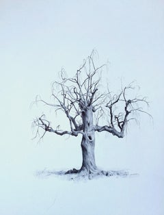 Untitled (Spirit Tree), realist ballpoint pen still life drawing, 2020
