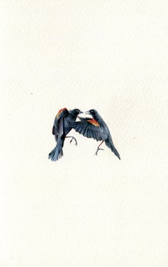 Red-Winged Blackbirds, realist gouache on paper miniature bird portrait, 2020