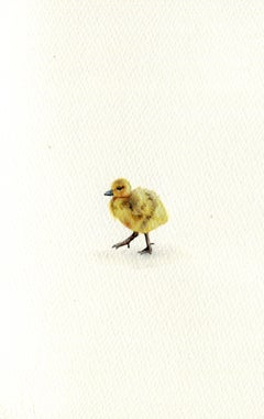 Gosling, realist gouache on paper miniature bird portrait, 2020