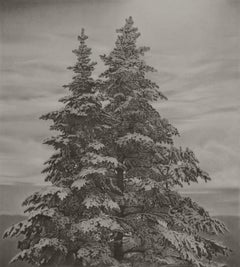 Twin Spruce 2, photorealist graphite landscape drawing, 2020