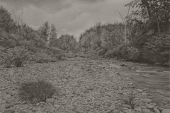 Riverbank 3, photorealist graphite landscape drawing, 2021