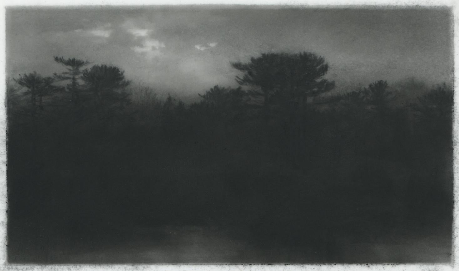 Streamside, black and white realist northeastern landscape drawing, charcoal