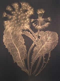 Margot Glass, Dandelion, goldpoint on paper realist still life drawing, 2018