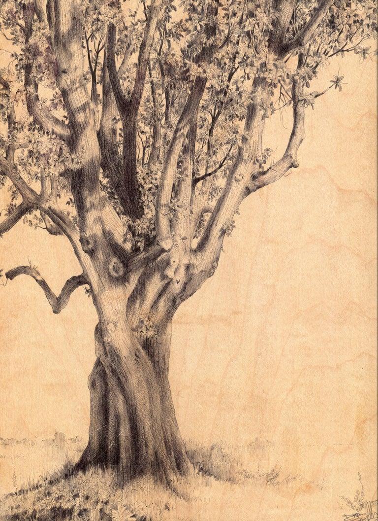 Dina Brodsky, Hamilton Tree 261, realist ballpoint pen on wood drawing, 2018 - Art by Dina Brodsky