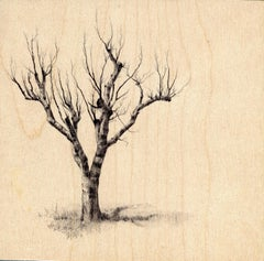 Dina Brodsky, Hamilton Tree 2264, Ballpoint pen on wood, 2018
