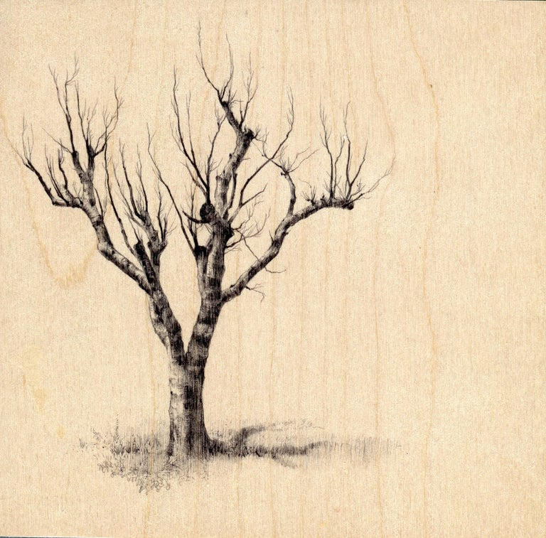"""In her ballpoint pen on wood miniature, """"Hamilton Tree 2264,"""" Dina Brodsky uses a sketch-like approach to capture the texture of the tree bark, and the delicacy of its branches. By allowing the wood support to peer amply through the negative space"""