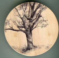 Dina Brodsky, Tree Tondo 1262, Ballpoint pen on wood miniature tondo