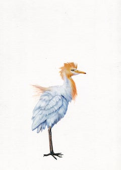 Dina Brodsky, Egret, realist animal watercolor on paper, 2019