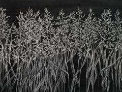 Margot Glass, Grasses (4), realist graphite on paper floral still life, 2019