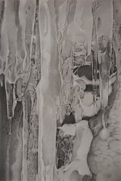 Mary Reilly, Ice 1, photorealist graphite nature drawing, 2018