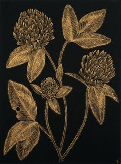 Red Clover #3, gold ink and black botanical still life drawing, 2020