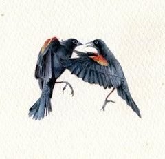Red-Winged Blackbirds, realist gouache on paper miniature bird portrait, 2020