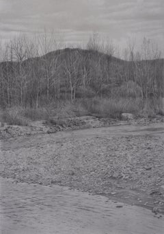 Riverbank 5, photorealist graphite landscape drawing, 2021