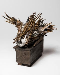 Goat Head in wood box Sculpture: 'Jersey Devil I'