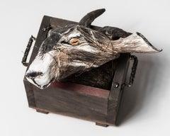 Goat Head sculpture in Wood box: 'Jersey Devil II'