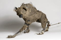 Coyote wrapped in burlap Sculpture: 'The Queens Beast'