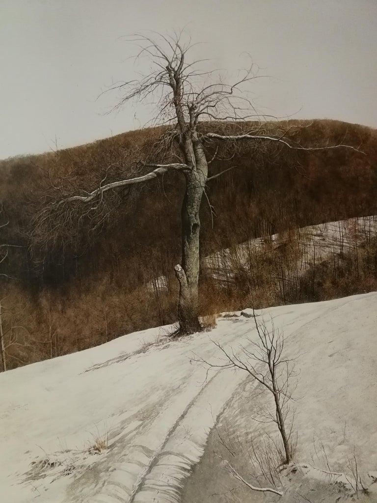 Winter afternoon light - Realist Art by Laura Zuccheri