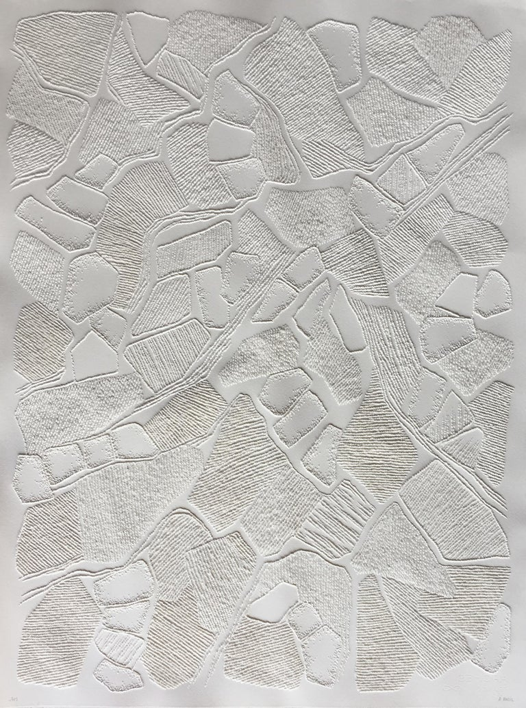 Antonin Anzil Abstract Drawing - Untitled 1 - intricate white 3D abstract geometric drypoint drawing on paper