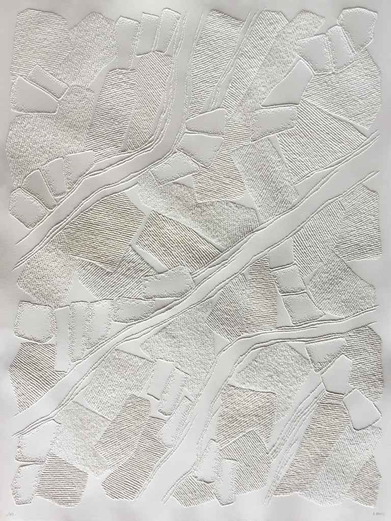 Antonin Anzil Abstract Drawing - Untitled 4 - intricate white 3D abstract geometric drypoint drawing on paper