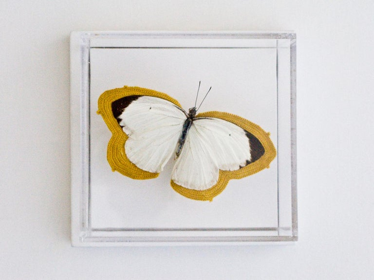 Pale - white and black butterfly embroidered with yellow thread - Mixed Media Art by Esther Traugot