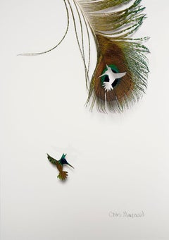 Humming bird -peacock feather colorful still life composition on paper
