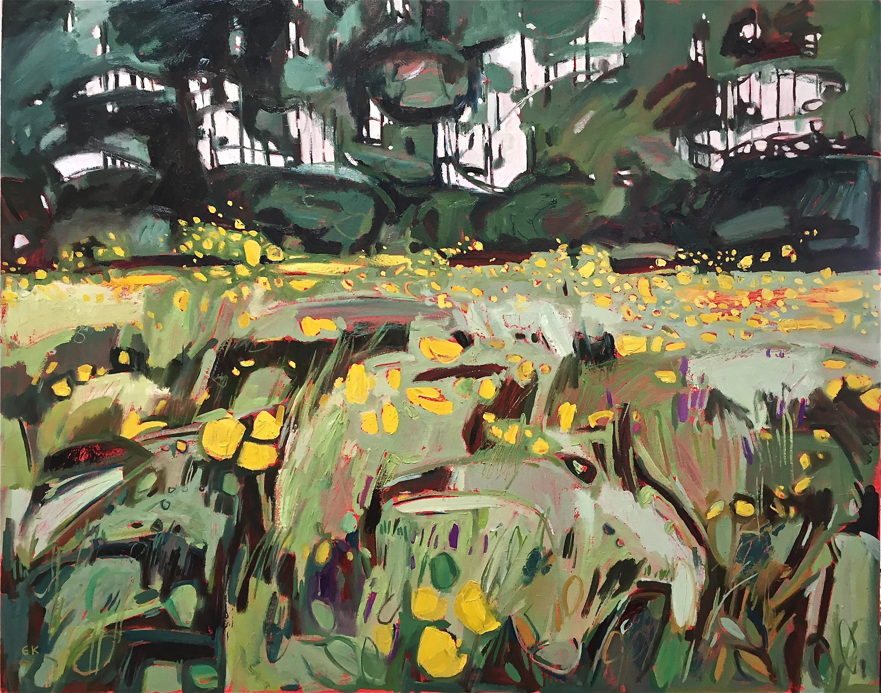Buttercup Meadow at Grandpont