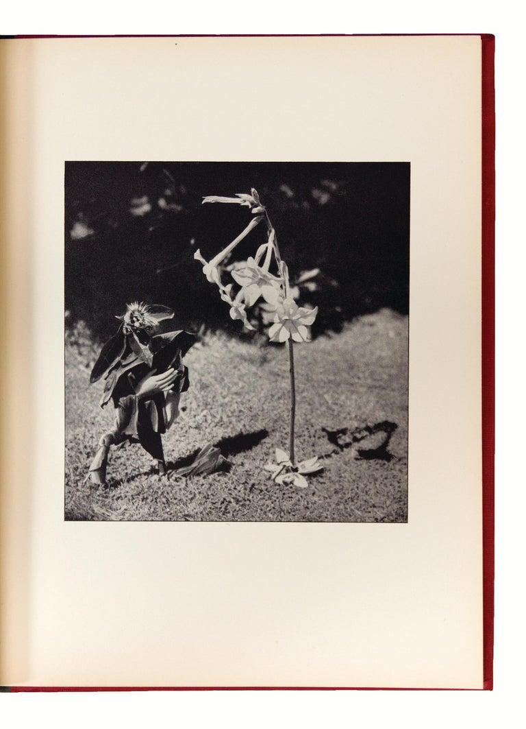 Le Coeur de Pic.   - Surrealist Photograph by Claude Cahun