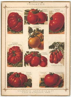 French Tomato Poster