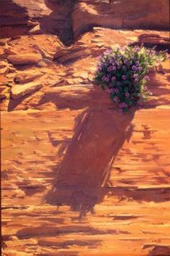 Four O'Clock (desert landscape, flowers, persistence, Coors)