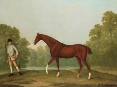"The chestnut horse ""Piggy"" in a woodland landscape"