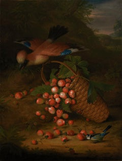 A jay sitting on the handle of a basket of strawberries - Still Life