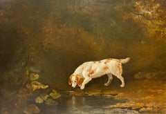 A spaniel by a pond in a woodland landscape