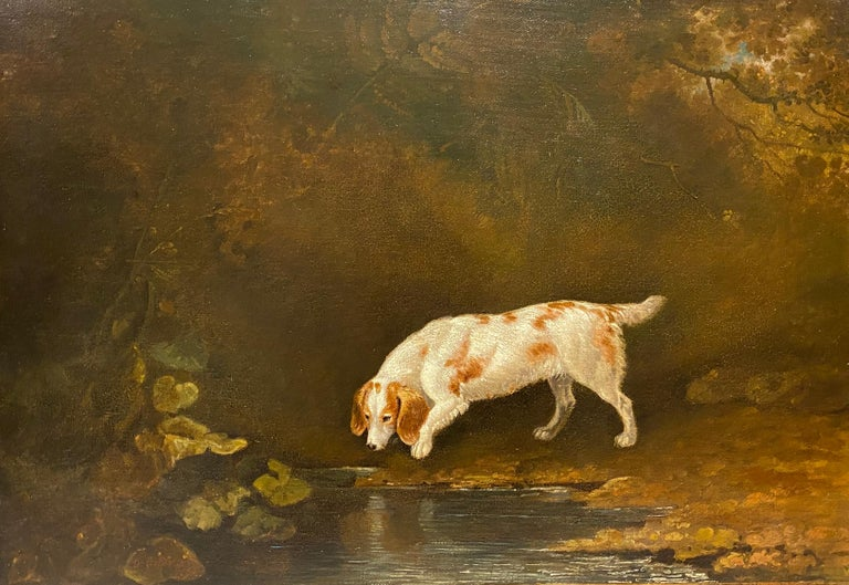 Edwin Cooper Animal Painting - A spaniel by a pond in a woodland landscape