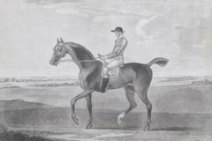 Mr Lamego's chestnut horse 'Little Driver'