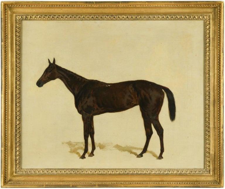 Harry Hall Animal Painting - A Dark Bay racehorse