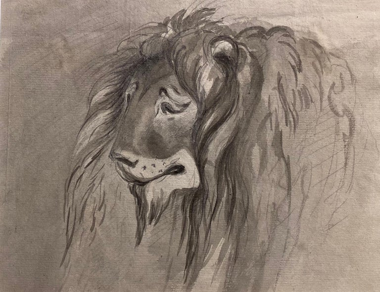 William Locke the Younger Animal Art - Study of a Lion