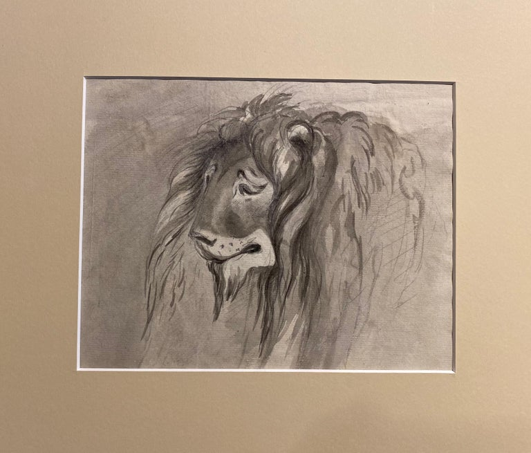 Study of a Lion - Art by William Locke the Younger