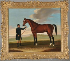 Syphax a Horse of Sir John Frederick's Baronet, Taken from the life at His seat