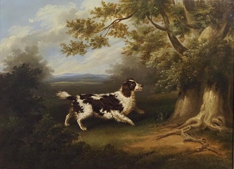 A Spaniel in a wooded landscape - Painting by George Jackson