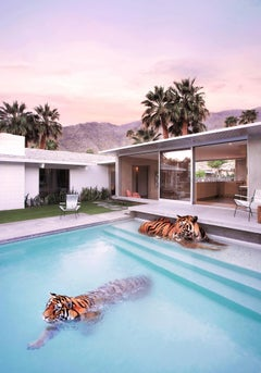 Palm Springs Tigers - Oversize signed limited edition print