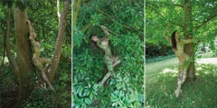 Women and Trees VI, V and IV, Triptych