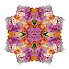 Mandala 4B, From the Mandala Series