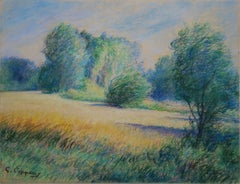 Tribute to Monet : Impressionist Countryside - Original charcoal drawing, Signed