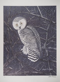 The Owl - Lithograph, Ltd 50 copies