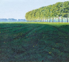 Ombre Lunghe in Risaia (Long Shadows in Paddy Field), Oil Painting