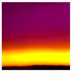 Wiborg Sky: Fuschia/Yellow