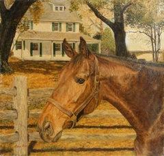 Nani, Horse Painting by Helene Alison