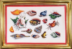 Chinese Export Watercolours on Pith Paper, set of twelve Shells