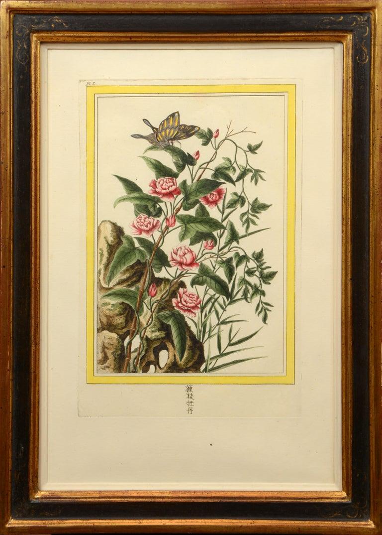Les Fleurs les plus belles et les plus curieuses: a set of 12 Chinese flowers. For Sale 2