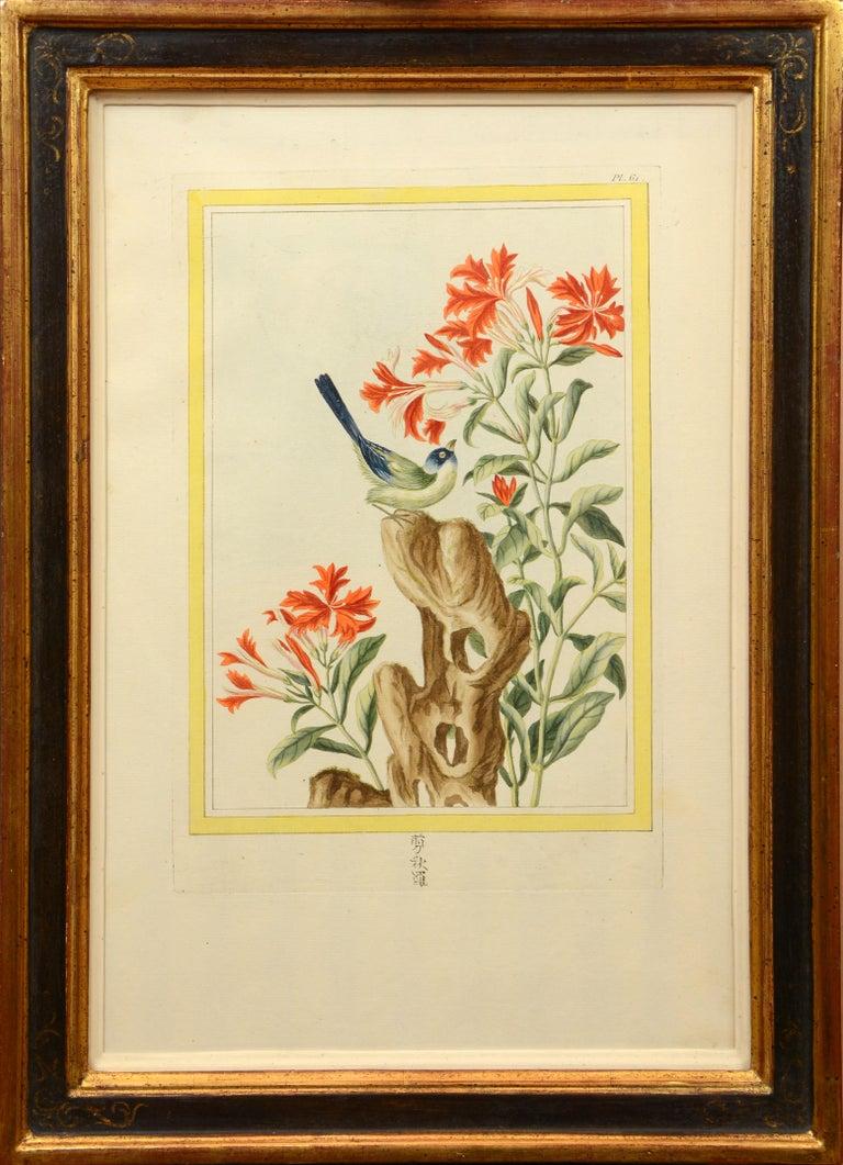Les Fleurs les plus belles et les plus curieuses: a set of 12 Chinese flowers. For Sale 4
